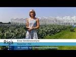 Kort introductiefilmpje RIGA-project: micro-irrigatieleidingen en druppelaars met antimicrobiële en antiworteleigenschappen